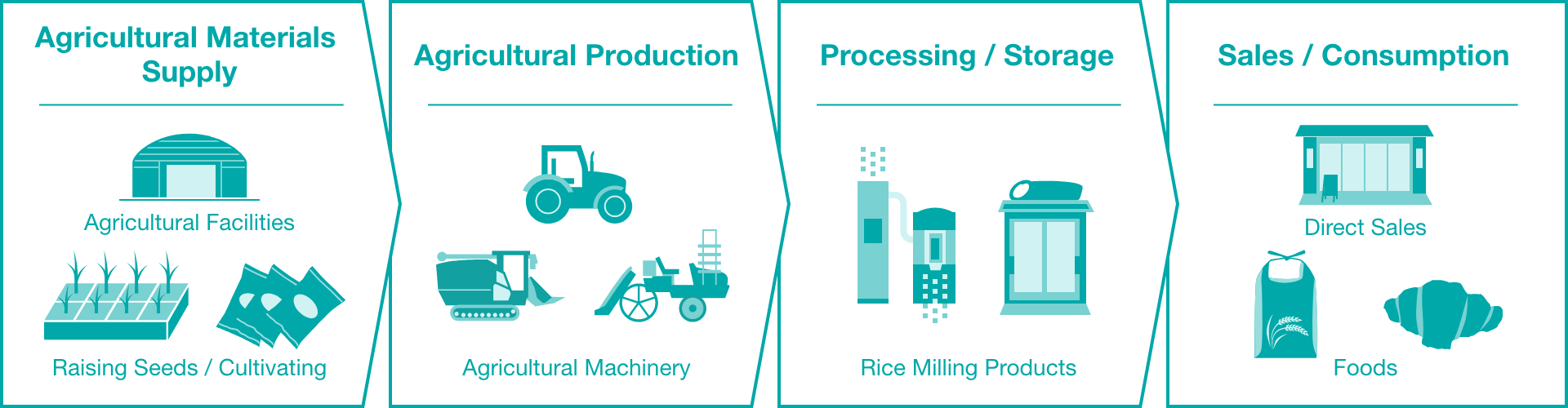 Agricultural Materials Supply - Agricultural Production - Processing / Storage - Sales / Consumption