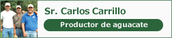 Sr. Carlos Carrillo